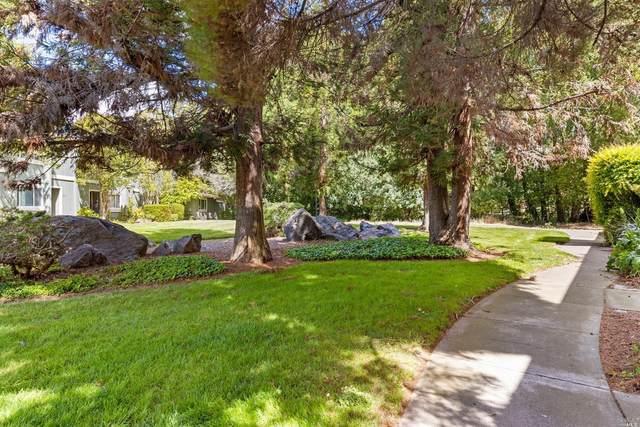 39 Oliva Drive, Novato, CA 94947 (#321030159) :: Intero Real Estate Services