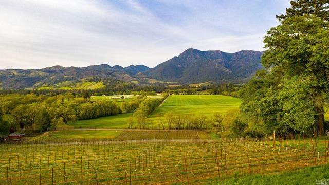 11490 Franz Valley Road, Calistoga, CA 94515 (#321030934) :: Intero Real Estate Services