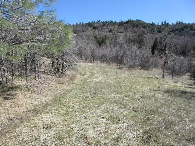 41 Acres Verde Vista Lane, Round Mountain, CA 96084 (#321032025) :: The Abramowicz Group