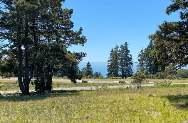 727 Spring Meadow, The Sea Ranch, CA 95497 (#321032761) :: The Abramowicz Group