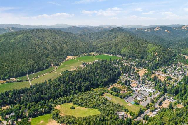 16725 Guernewood Road, Guerneville, CA 95446 (#321033848) :: The Abramowicz Group