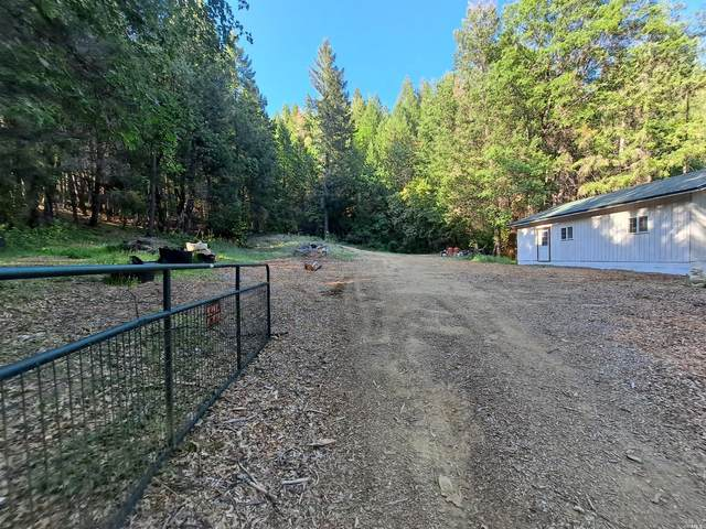 38240 Old Ukiah Pine Road, Potter Valley, CA 95469 (#321034184) :: The Abramowicz Group