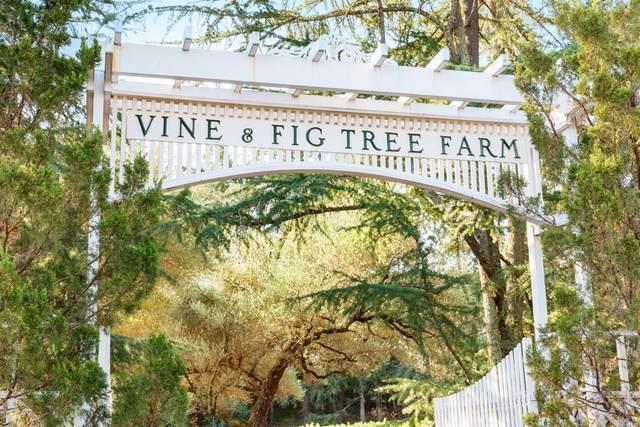 2455 Sulphur Springs Avenue, St. Helena, CA 94574 (#321024923) :: Team O'Brien Real Estate