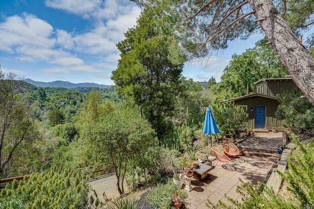 93 Madrone Road, Fairfax, CA 94930 (#321041316) :: Golden Gate Sotheby's International Realty