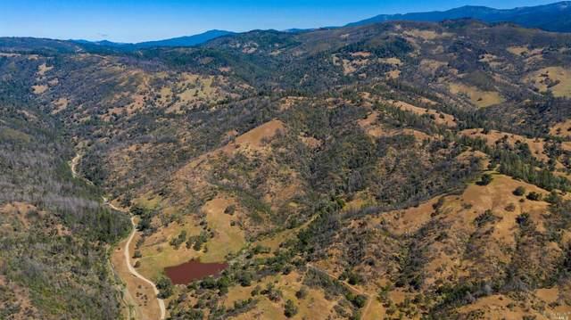 0 Busch Creek Road, Potter Valley, CA 95469 (#321043266) :: Golden Gate Sotheby's International Realty