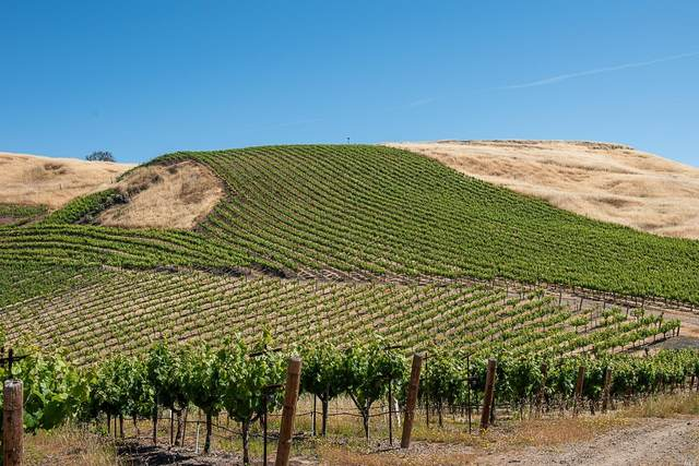 6923 Plum Ranch, Santa Rosa, CA 95404 (#321047531) :: Rapisarda Real Estate
