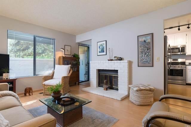 204 Park Place Drive, Petaluma, CA 94954 (#321047036) :: Corcoran Global Living