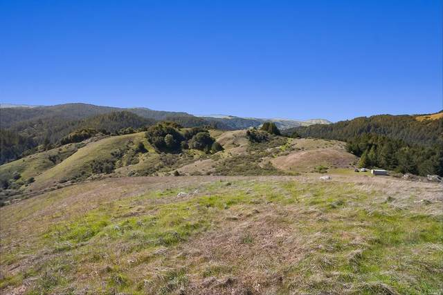 5888 Lucas Valley Road, Nicasio, CA 94946 (#321048217) :: Golden Gate Sotheby's International Realty
