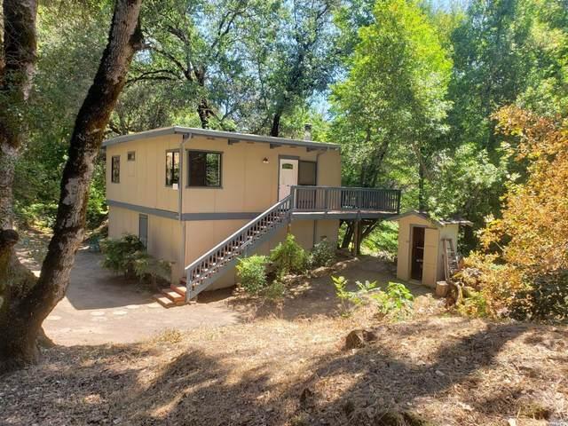 8001 E Side Potter Valley Road, Potter Valley, CA 95469 (#321049313) :: Golden Gate Sotheby's International Realty