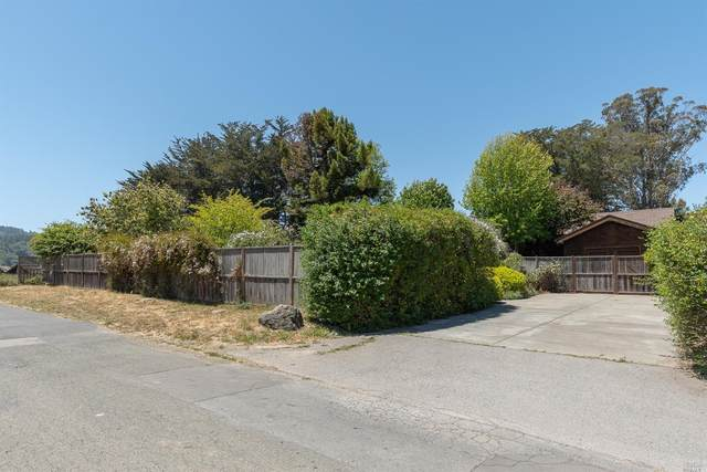 50 Cherry Tree Lane, Point Reyes Station, CA 94956 (#321047282) :: Team O'Brien Real Estate