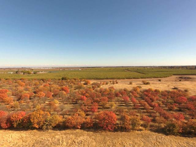 0 County Road 88, Winters, CA 95694 (#221063012) :: Golden Gate Sotheby's International Realty