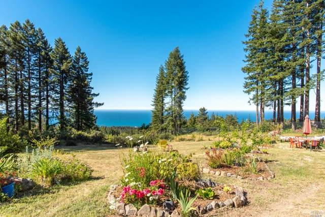 45101 Fish Rock Road, Gualala, CA 95445 (#321047300) :: Jimmy Castro Real Estate Group