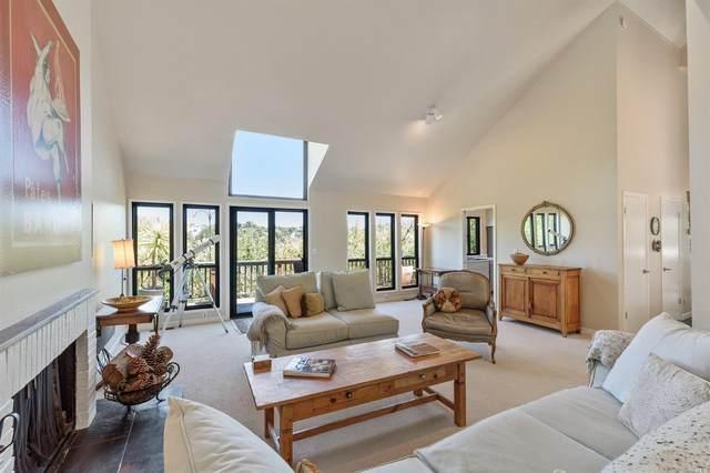 171 Spring Grove Avenue, San Anselmo, CA 94960 (#321049526) :: Golden Gate Sotheby's International Realty