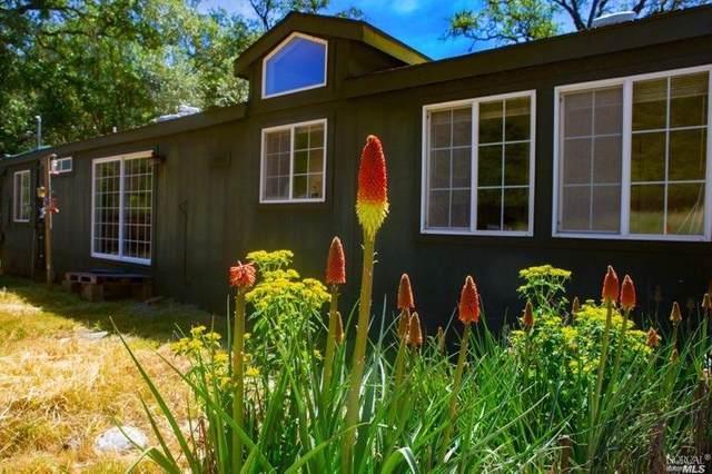 18852 Van Arsdale Road, Potter Valley, CA 95469 (#321050298) :: Lisa Perotti   Corcoran Global Living