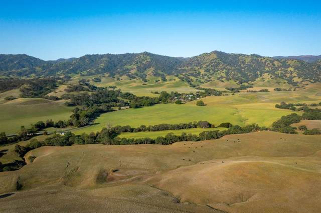 25491 County Road 29 Road, Winters, CA 95694 (#221062817) :: Golden Gate Sotheby's International Realty