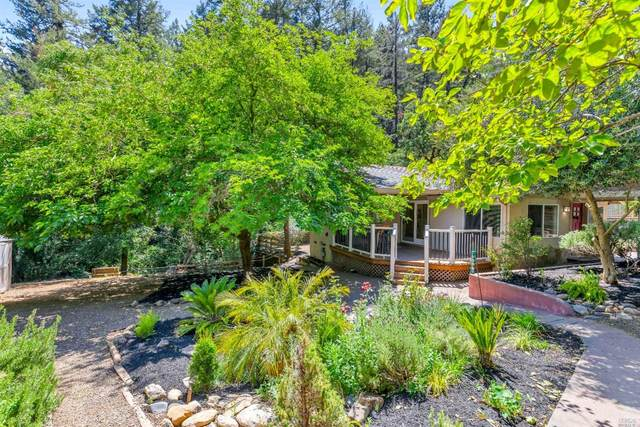 5373 Dry Creek Road, Napa, CA 94558 (#321050914) :: Jimmy Castro Real Estate Group