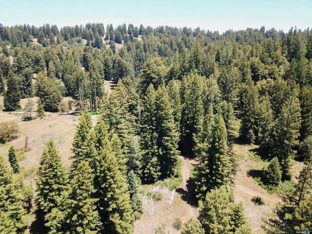3611 Flynn Creek Road, Comptche, CA 95427 (#321051178) :: Golden Gate Sotheby's International Realty