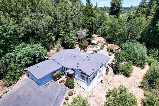 8225 Trenton Road, Forestville, CA 95436 (#321050558) :: Lisa Perotti | Corcoran Global Living