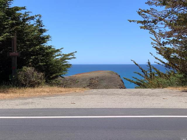 29950 S Highway 1, Gualala, CA 95445 (#321049956) :: Jimmy Castro Real Estate Group