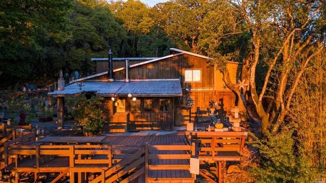 2955 Sonoma Mountain, Petaluma, CA 94954 (#321053789) :: Lisa Perotti | Corcoran Global Living