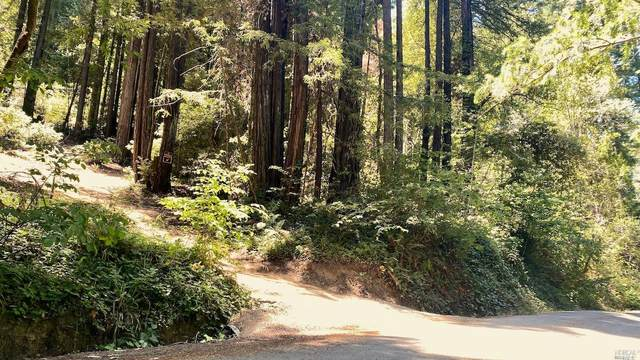 18560 Old Monte Rio Road, Guerneville, CA 95446 (#321059450) :: The Abramowicz Group