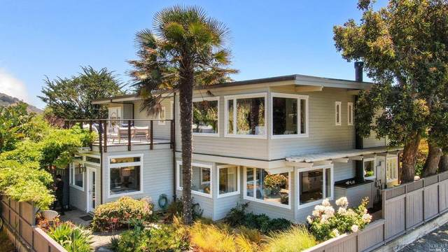 102 Calle Del Arroyo, Stinson Beach, CA 94970 (#321059824) :: Golden Gate Sotheby's International Realty