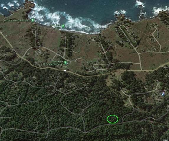 35206 Fly Cloud Road, The Sea Ranch, CA 95497 (#321061033) :: Golden Gate Sotheby's International Realty