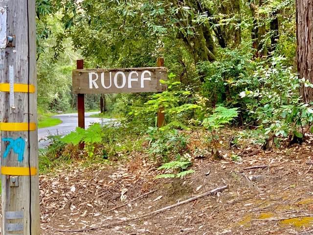 22107 Ruoff Road, Jenner, CA 95450 (#321057068) :: Lisa Perotti | Corcoran Global Living