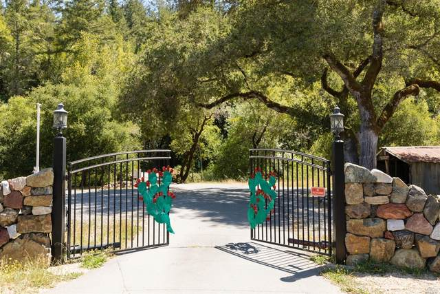 5760 Lucas Valley Road, Nicasio, CA 94946 (#321062334) :: Golden Gate Sotheby's International Realty