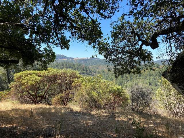 0 Petrified Forest Road, Calistoga, CA 94515 (#321065358) :: Golden Gate Sotheby's International Realty