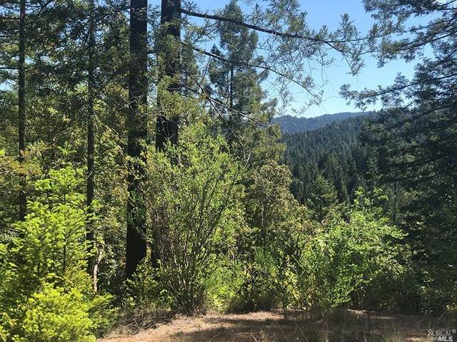 21200 Nash Mill Road, Philo, CA 95466 (#321066326) :: The Abramowicz Group