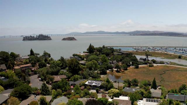 771 Point San Pedro Road, San Rafael, CA 94901 (#321066724) :: Team O'Brien Real Estate