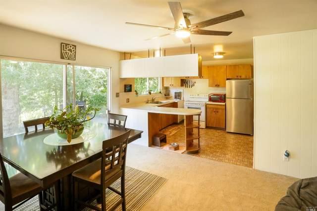 16250 Tish A Tang Road, Lower Lake, CA 95457 (#321067981) :: Hiraeth Homes