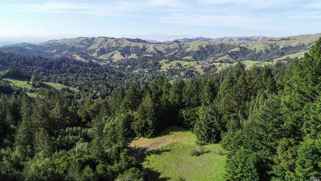 1 Summit Drive, Woodacre, CA 94973 (#321070002) :: Lisa Perotti | Corcoran Global Living