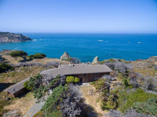 47240 Havens Neck Drive, Gualala, CA 95445 (#321063543) :: Golden Gate Sotheby's International Realty