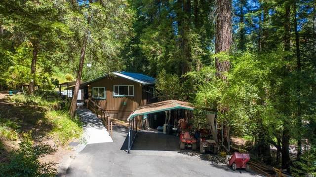 2140 Green Hill Road, Sebastopol, CA 95472 (#321068507) :: Golden Gate Sotheby's International Realty