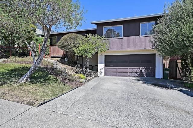 192 Esmeyer Drive, San Rafael, CA 94903 (#321060433) :: Team O'Brien Real Estate