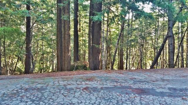 2421 Otter Lane, Willits, CA 95490 (#321070589) :: Golden Gate Sotheby's International Realty