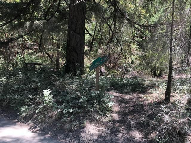 0 Woodman Creek Road, Laytonville, CA 95454 (#321071105) :: RE/MAX Accord (DRE# 01491373)