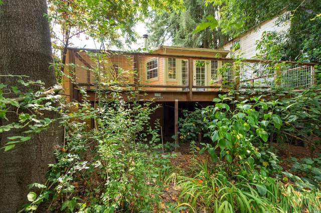 11027 Sunset Avenue, Forestville, CA 95436 (#321071333) :: Golden Gate Sotheby's International Realty