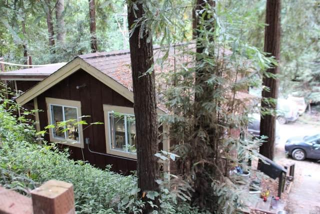 9189 Rio Dell, Forestville, CA 95436 (#321072110) :: Lisa Perotti | Corcoran Global Living