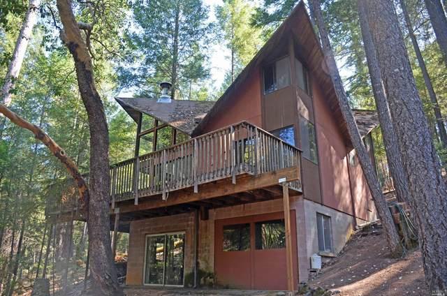 4312 Forest Hill Drive, Lake Pillsbury, CA 95469 (#321074169) :: Lisa Perotti | Corcoran Global Living
