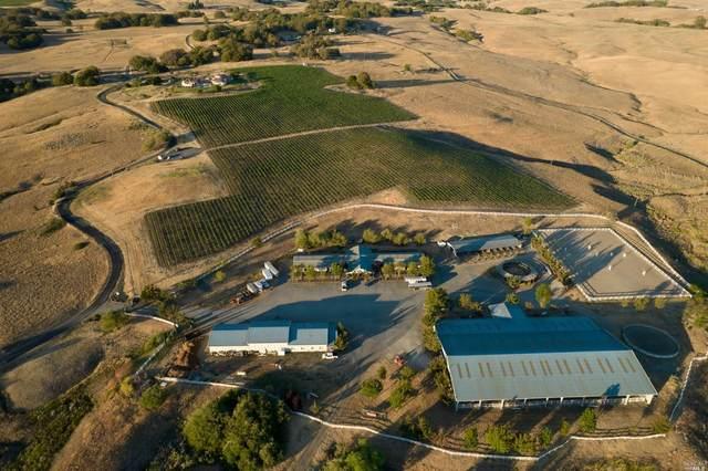 2420 Mountain Ranch Road, Petaluma, CA 94954 (#321072546) :: Lisa Perotti | Corcoran Global Living