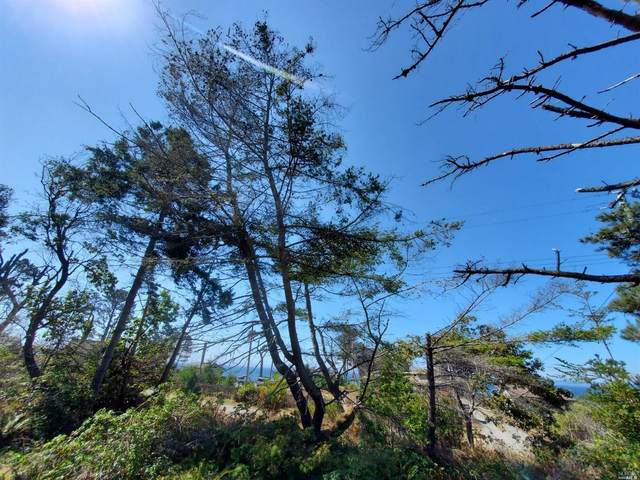 37891 Old Coast Highway, Gualala, CA 95445 (#321083117) :: Lisa Perotti   Corcoran Global Living