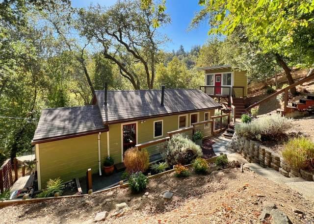 93 Pine Drive, Fairfax, CA 94930 (#321087897) :: Golden Gate Sotheby's International Realty