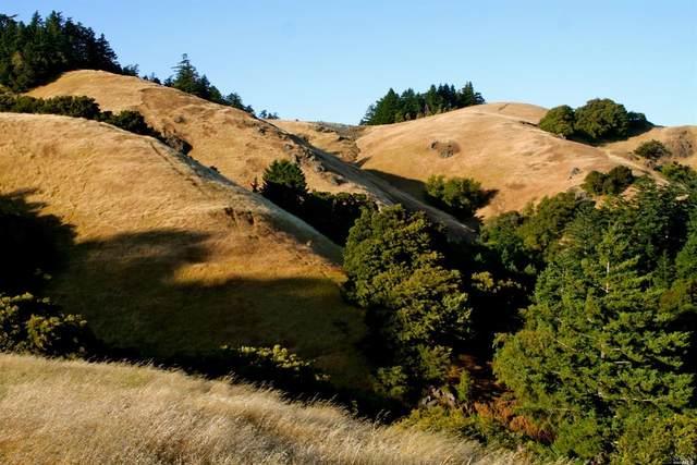 5 Meadow View Lane, San Geronimo, CA 94963 (#321088909) :: Lisa Perotti | Corcoran Global Living