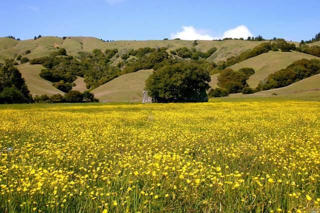 9 Meadow View Lane, San Geronimo, CA 94963 (#321088912) :: Lisa Perotti | Corcoran Global Living