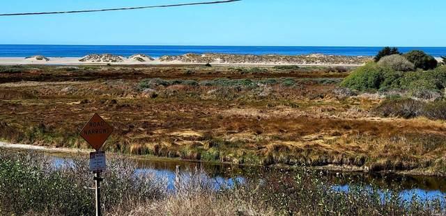 100 Bean Avenue, Bodega Bay, CA 94923 (#321093873) :: Golden Gate Sotheby's International Realty