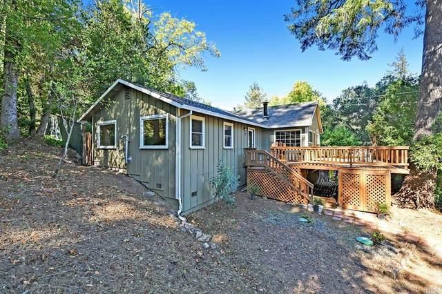 21 Mission Street, Camp Meeker, CA 95419 (#321094314) :: RE/MAX Accord (DRE# 01491373)