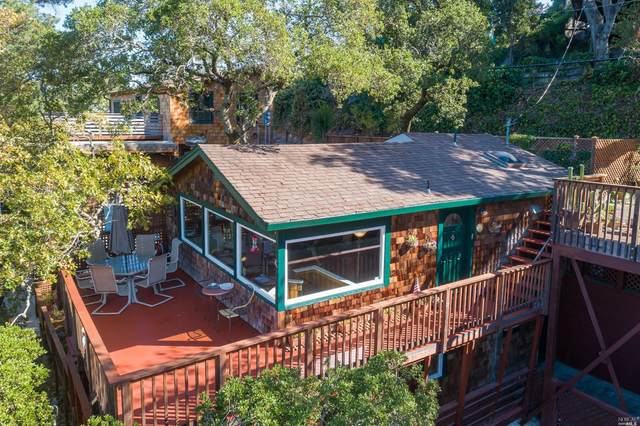 446 Scenic Road, Fairfax, CA 94930 (#321096050) :: Golden Gate Sotheby's International Realty